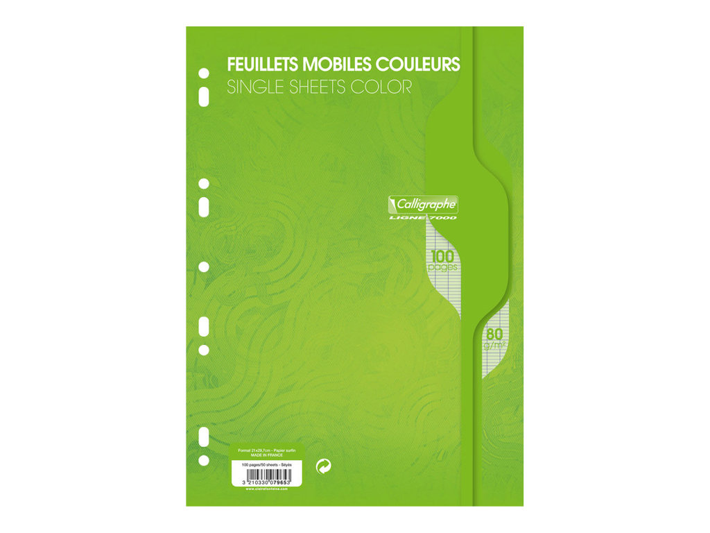 Calligraphe - 100 feuilles simples A4 - grands carreaux (Seyes) - perforées - vert